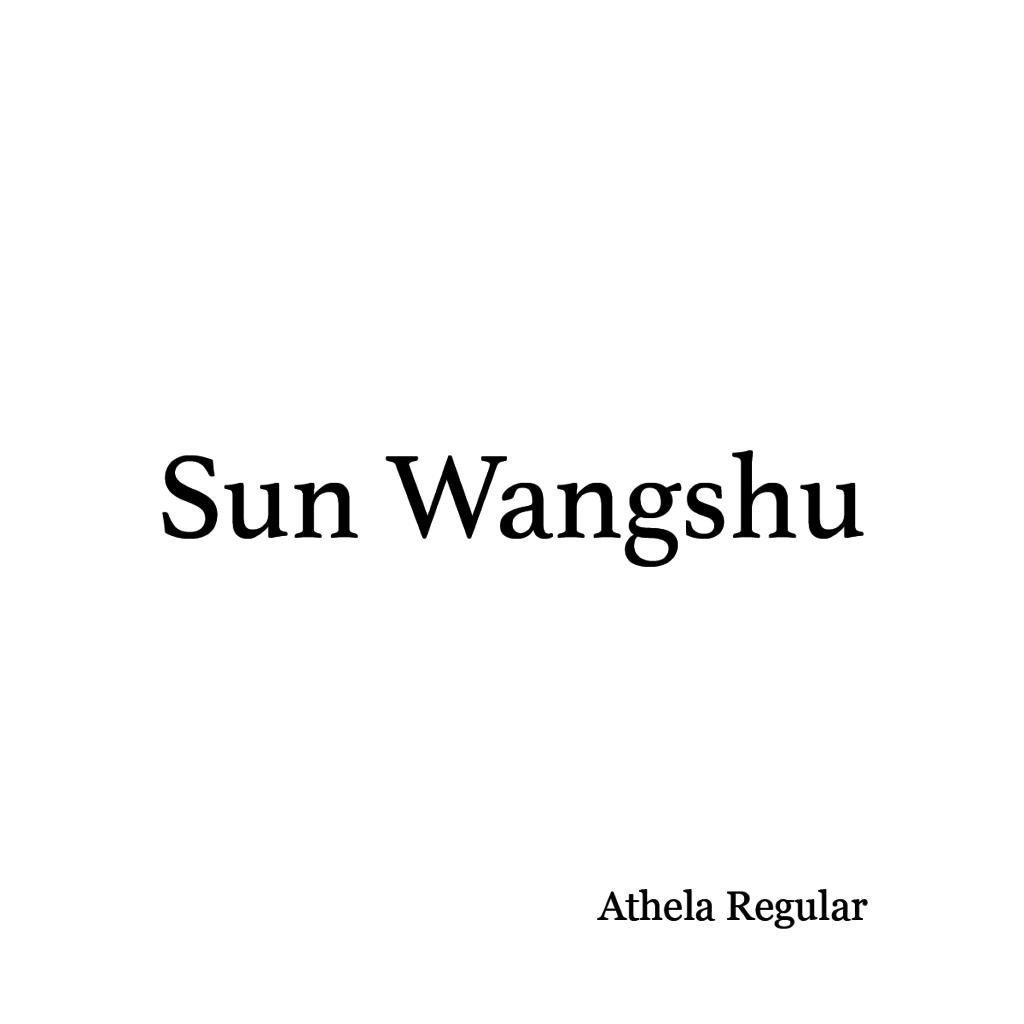 Sun Wangshu-01