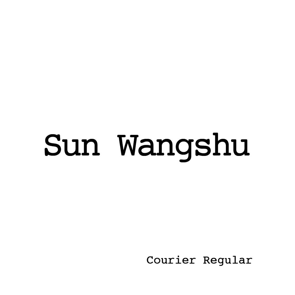 Sun Wangshu-02