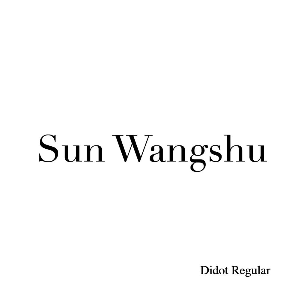 Sun Wangshu-03