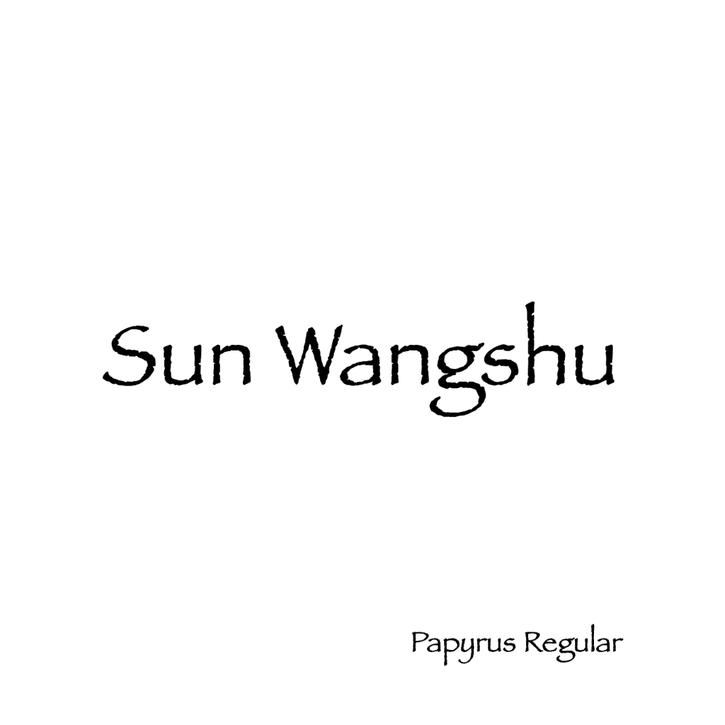 Sun Wangshu-05