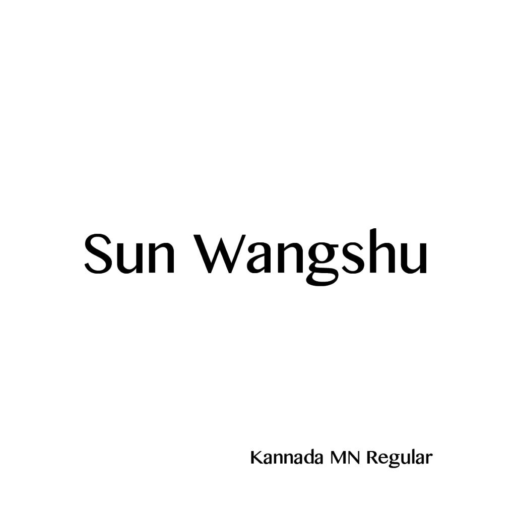 Sun Wangshu-06