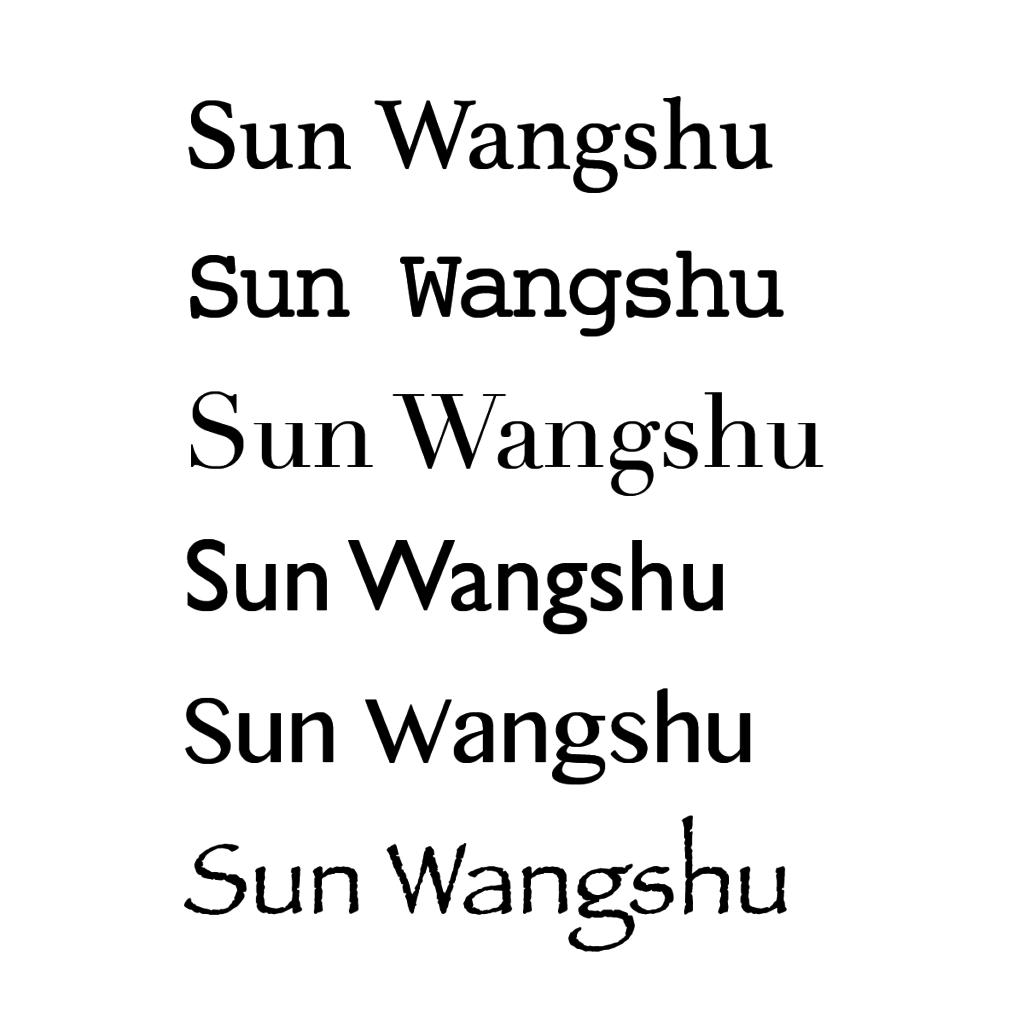 Sun Wangshu-07